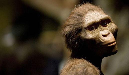 evolution-neandertaler-homo-sapiens-homo-erectus_front